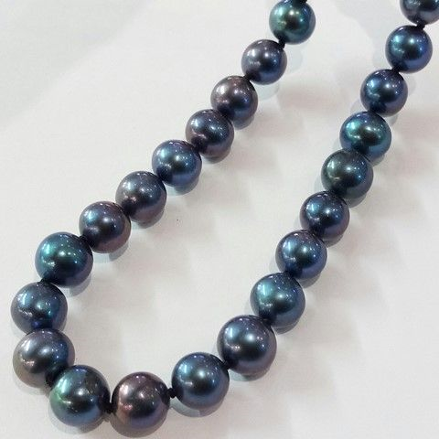 Grade A black (peacock) pearl necklace